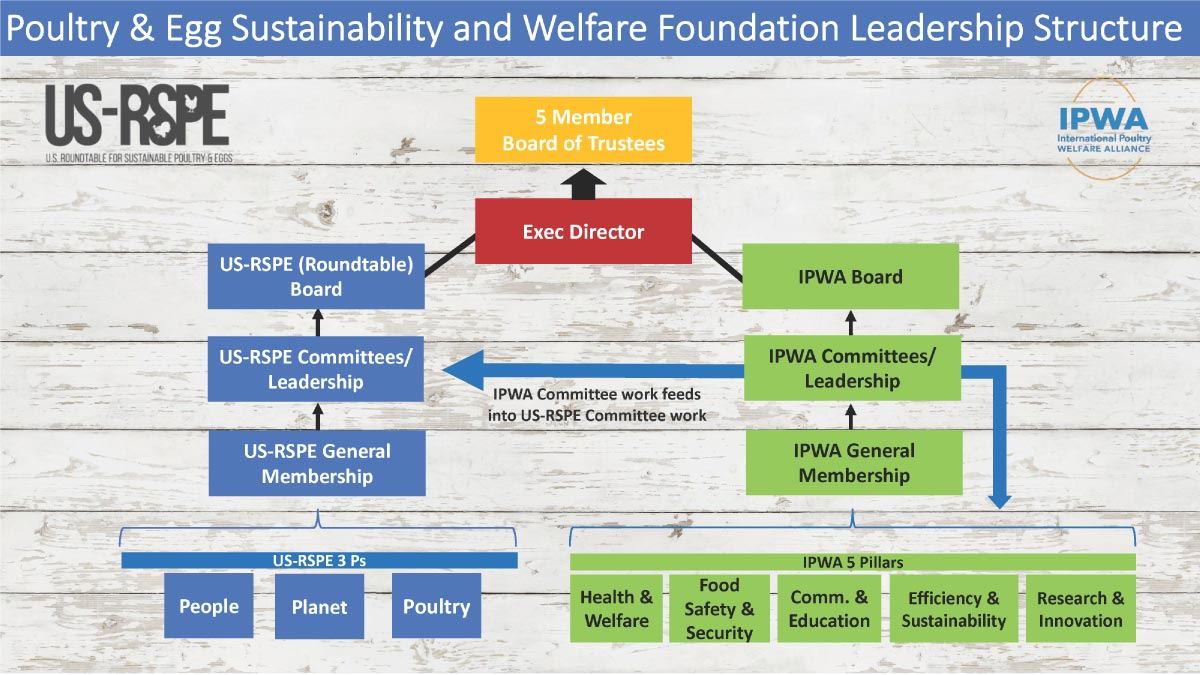IPWA Leadership Structure Chart
